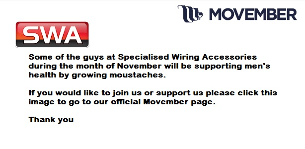 Movember Plain Advert